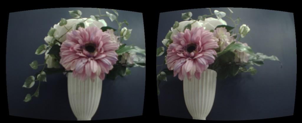 oculus_flower